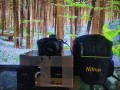 nikon-d5600-like-new-low-sutter-count-small-2