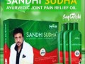 sandhi-sudha-small-0
