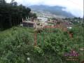 0-4-2-3-anna-land-on-sale-at-baad-bhanjyang-small-1